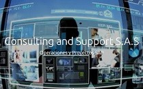 Consulting and Support, SAS